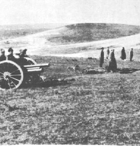 AEF artillery piece in Russia, 1919 (from Perry Moore's Military History Site.